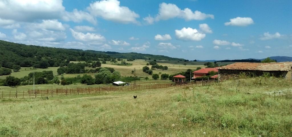 ПР агенция Варна, Креактив ПР, Дивата ферма