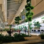 Креактив ПР, ПР Варна, пътуване, туризъм, Сингапур